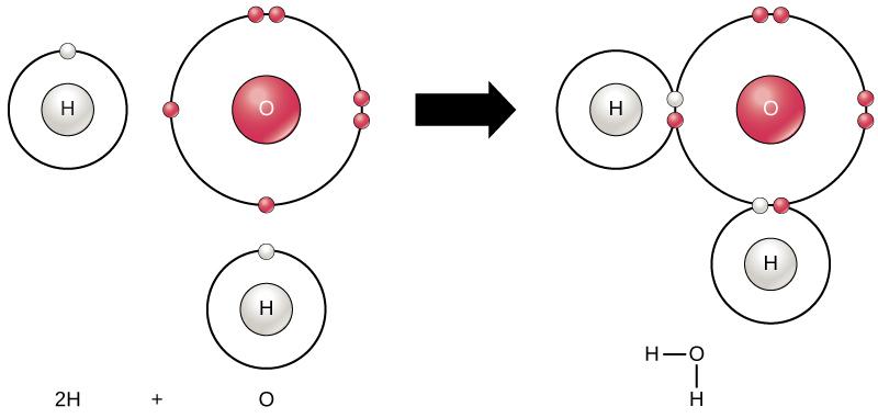 Figure 1-2b