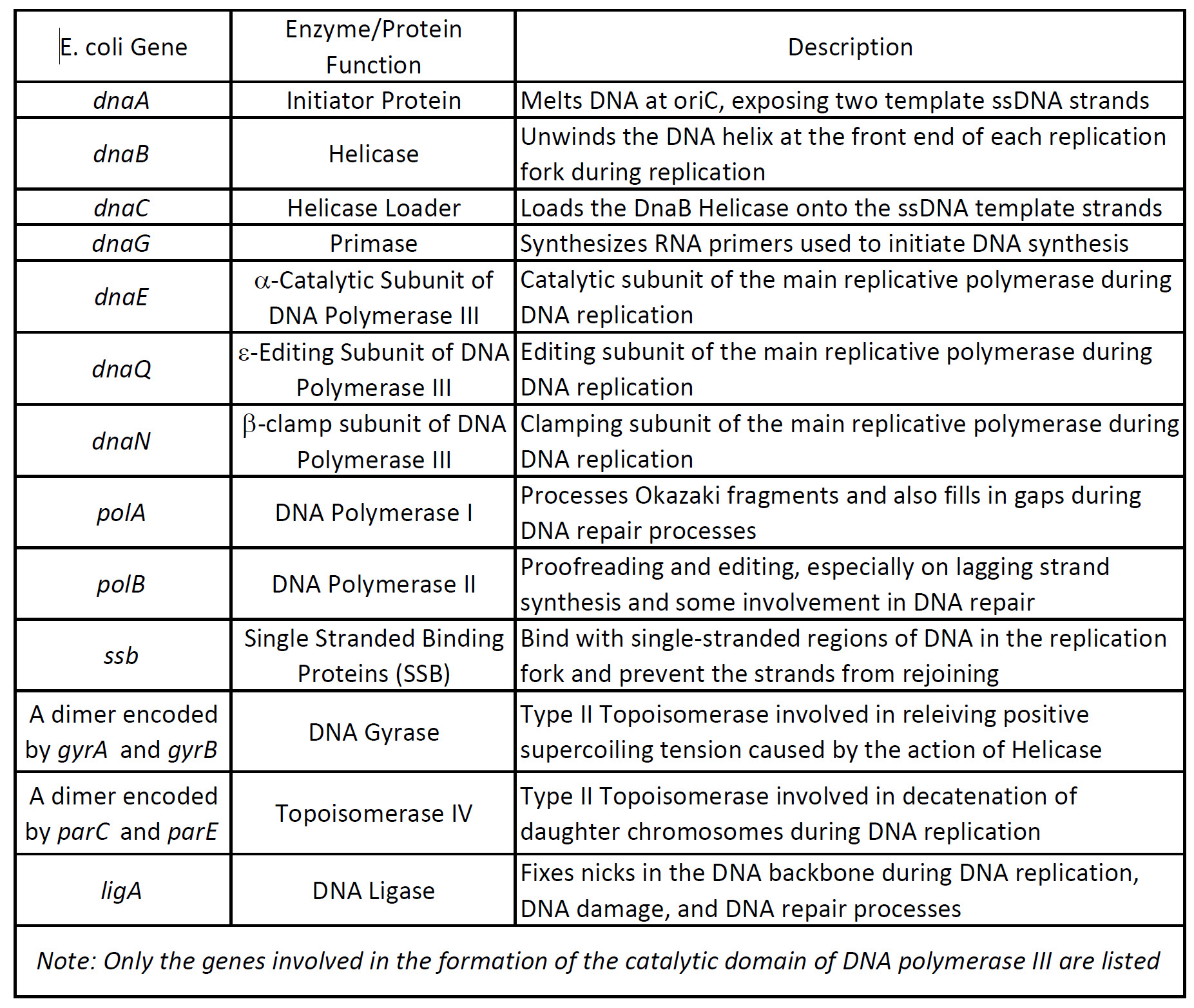 Chapter 9 Dna Replication Chemistry