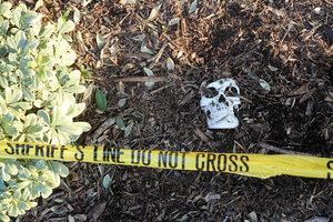 skull in crime scene