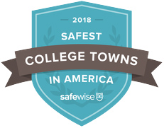 Safewise Report, 2018 logo