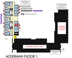 icon ackerman hall floor one