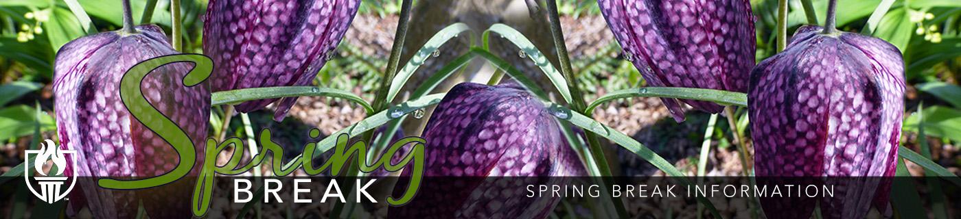 Information about Spring Break