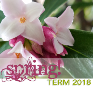 Welcome to Spring Term 2018