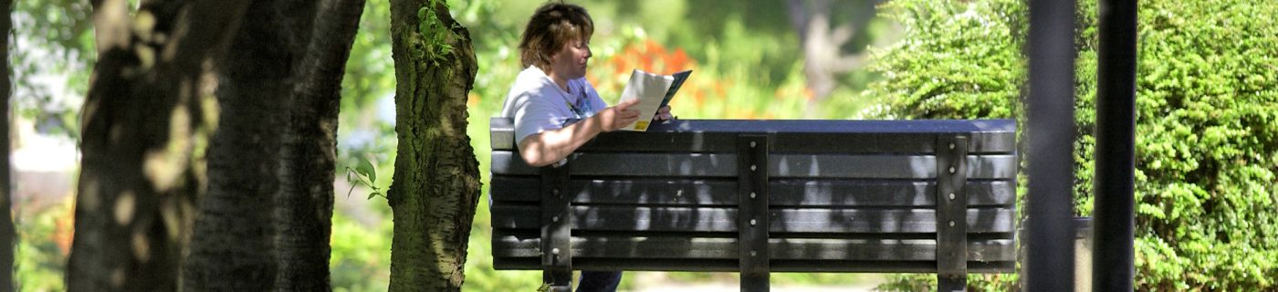 Person reading a book on a park bench.