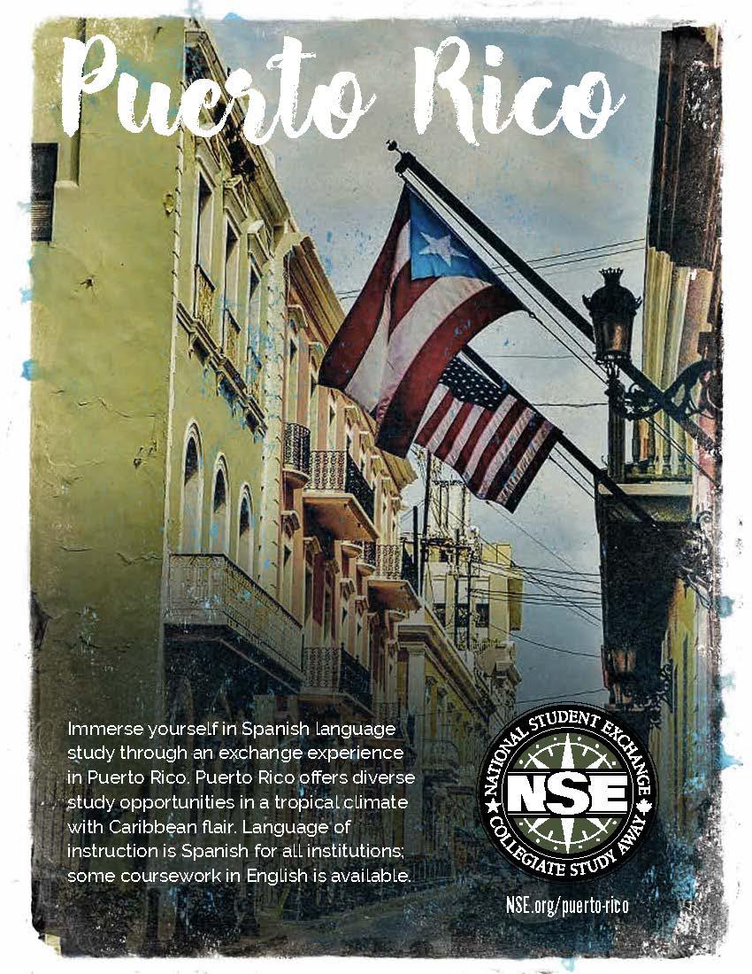 NSE Puerto Rico