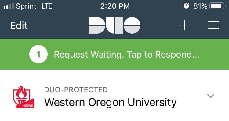 DUO request waiting - screenshot
